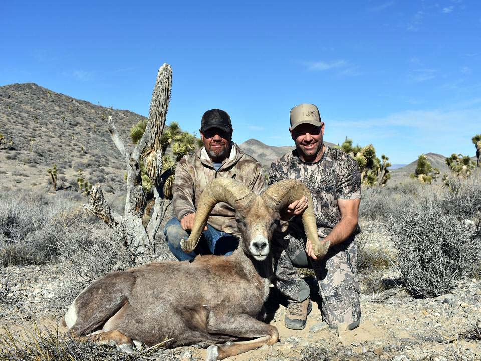Nevada Hunts with Nevada High Desert Outfitters