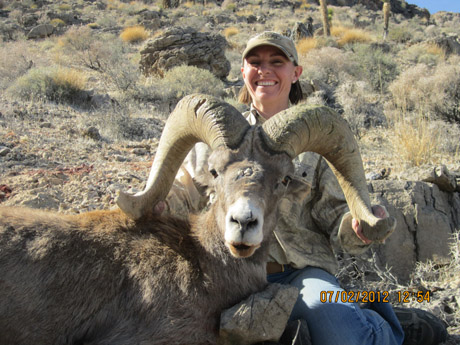 Nevada Bighorn Sheep Hunts with Nevada High Desert Outfitters